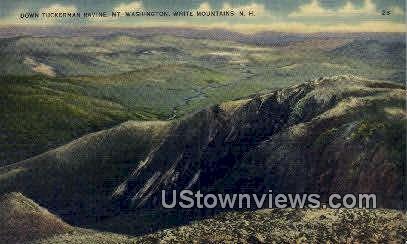 Down Tuckerman Ravine - White Mountains, New Hampshire NH Postcard