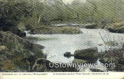 Trout Pool, West Branch - Bradford, New Hampshire NH Postcard