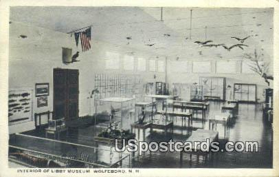 Libby Museum - Wolfeboro, New Hampshire NH Postcard
