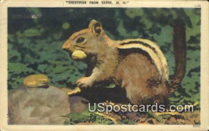 Keene, NH Postcard      ;      Keene, New Hampshire