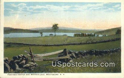 Feather Duster, Mirror Lake - Wolfeboro, New Hampshire NH Postcard