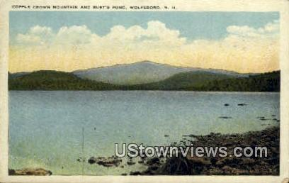 Copple Crown Mountain, Rust's Pond - Wolfeboro, New Hampshire NH Postcard