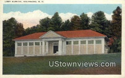 Libby Muse Um - Wolfeboro, New Hampshire NH Postcard