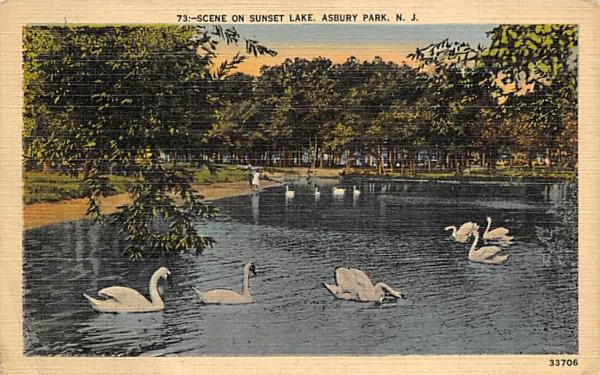 Scene on Sunset Lake Asbury Park, New Jersey Postcard