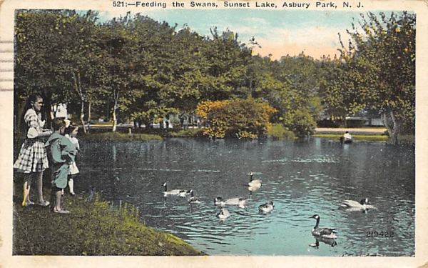 Feeding the Swans, Sunset Lake Asbury Park, New Jersey Postcard