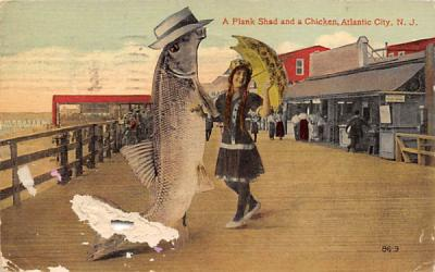 A Plank Shad and a Chicken Atlantic City, New Jersey Postcard