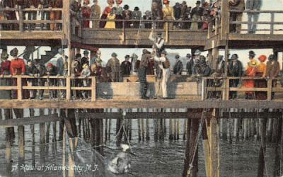 A Haul at Atlantic City New Jersey Postcard