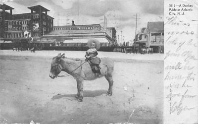 A Donkey Ride at Atlantic City, N. J., USA New Jersey Postcard