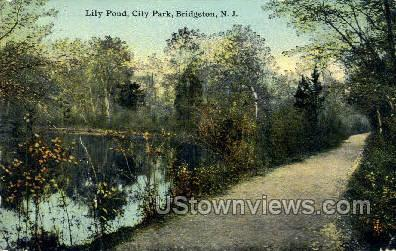 Lily Pond City Park  - Bridgeton, New Jersey NJ Postcard
