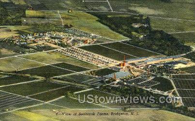 View Of Seabrook Farms  - Bridgeton, New Jersey NJ Postcard