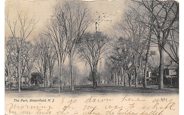 The Park Bloomfield, New Jersey Postcard