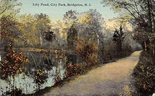 Lily Pond, City Park Bridgeton, New Jersey Postcard