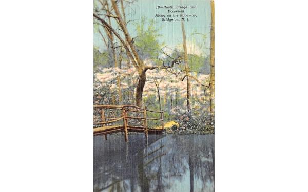 Rustic Bridge and Dogwood Bridgeton, New Jersey Postcard