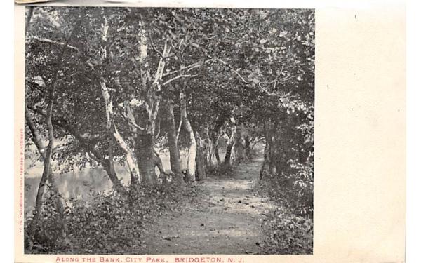 Along the Bank, City Park Bridgeton, New Jersey Postcard