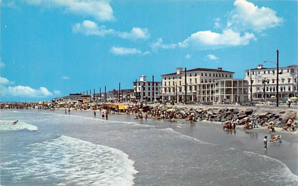 Sun bathers enjoying a wonderful day Cape May, New Jersey Postcard