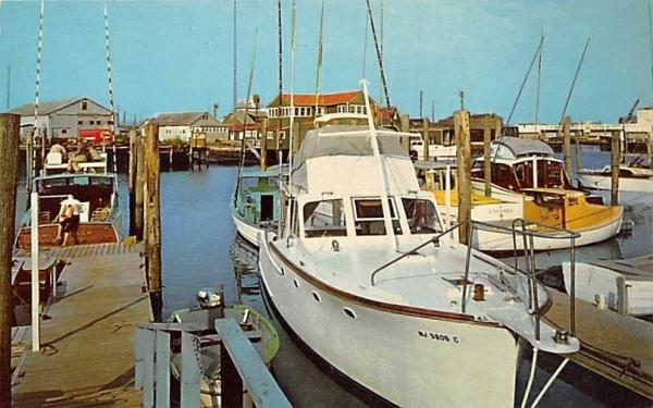 Private Pleasure Craft, Cape Island Marina Cape May, New Jersey Postcard