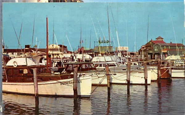 Schellenger's Landing Cape May, New Jersey Postcard