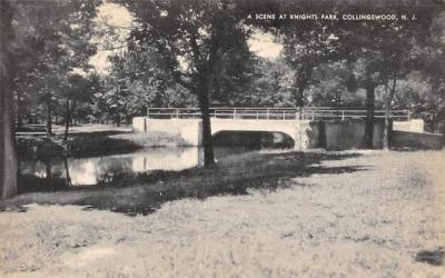 A Scene at Knights Park Collingswood, New Jersey Postcard