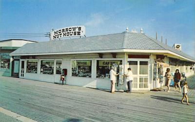 A Landmark in Cape May is Morrow's Nut House New Jersey Postcard