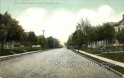Broad Street  - Flemington, New Jersey NJ Postcard