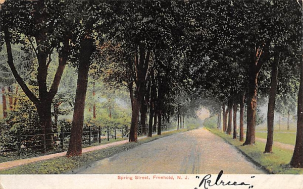 Spring Street Freehold, New Jersey Postcard