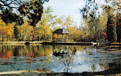 A beauty spot at America's Keswick Keswick Grove, New Jersey Postcard