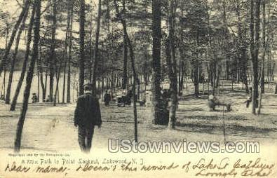 The Path To Point Lookout - Lakewood, New Jersey NJ Postcard