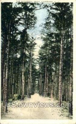 The Cathedral Drive  - Lakewood, New Jersey NJ Postcard