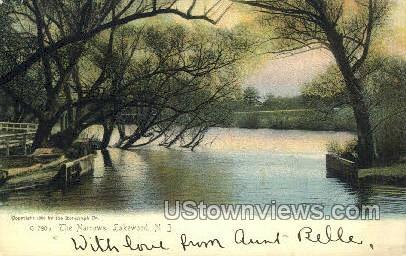 The Narrows - Lakewood, New Jersey NJ Postcard