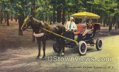 Horse Drawn Vehicle  - Lakewood, New Jersey NJ Postcard