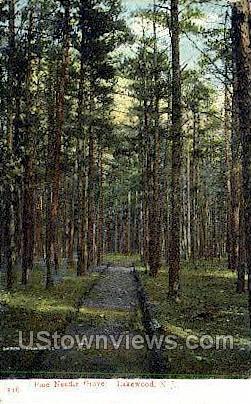 Pine Needle Grove - Lakewood, New Jersey NJ Postcard