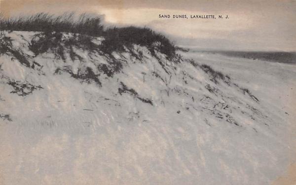 Sand Dunes Lavallette, New Jersey Postcard
