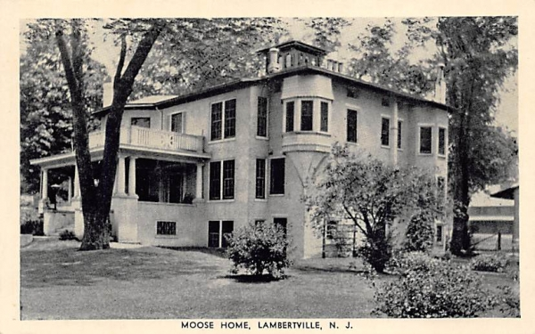 Moose Home Lambertville, New Jersey Postcard