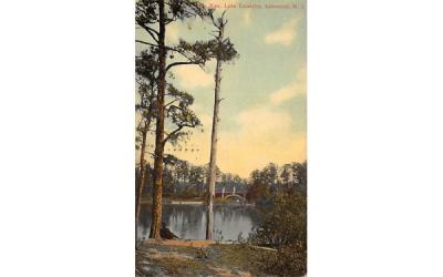The Lone Pine, Lake Carasaljo Lakewood, New Jersey Postcard