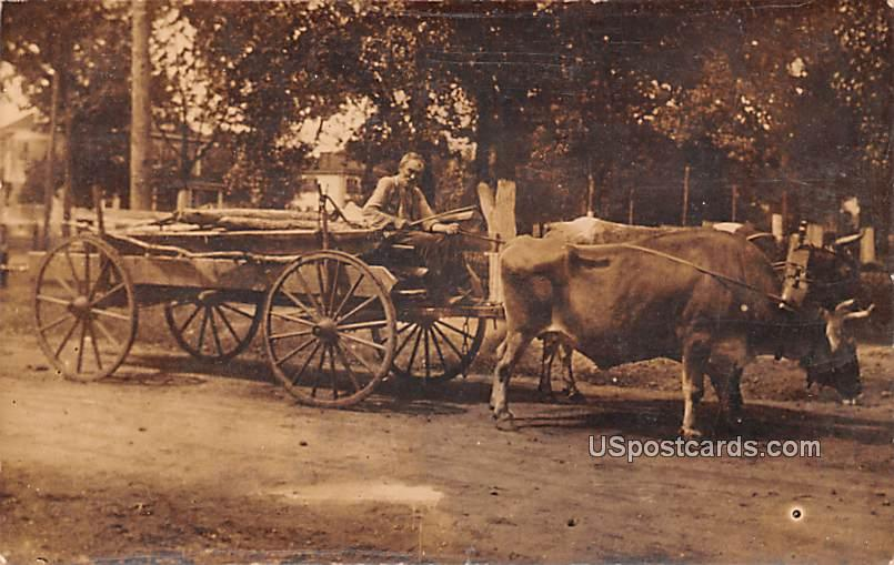 Bull and Carriage - Mayslanding, New Jersey NJ Postcard