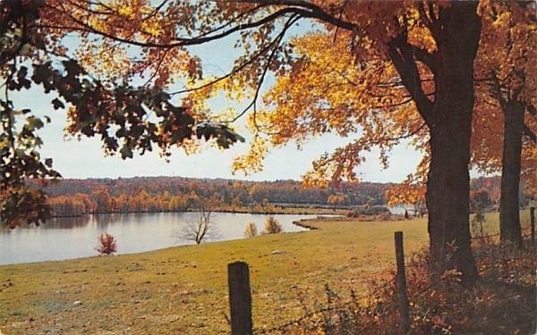 Lakeside Autumn Misc, New Jersey Postcard