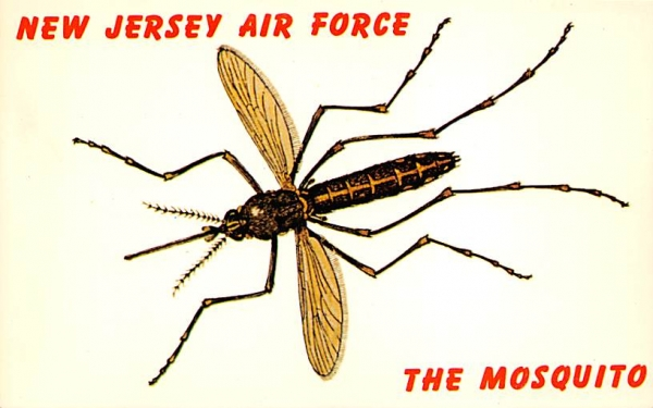 New Jersey Air Force The Mosquito Postcard