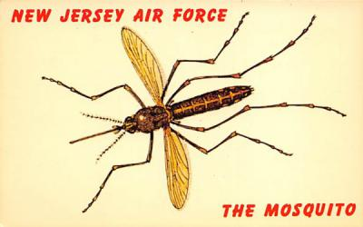 New Jersey Air Force, The Mosquito Postcard