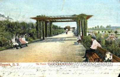 The Flower Terrace - Newark, New Jersey NJ Postcard