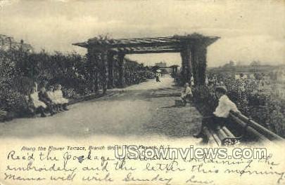 Flower Terrace - Newark, New Jersey NJ Postcard