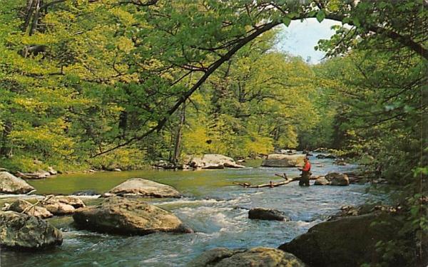 A Fisherman's Paradise New Brunswick, New Jersey Postcard