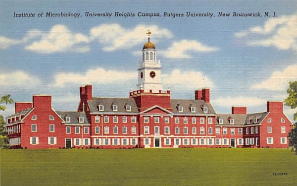 University Heights Campus, Rutgers University New Brunswick, New Jersey Postcard