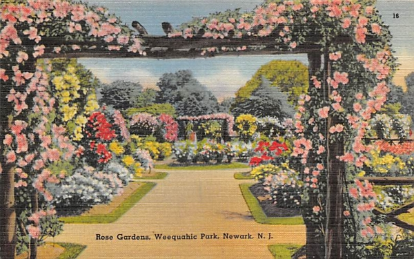 Rose Gardens, Weequahic Park  Newark, New Jersey Postcard