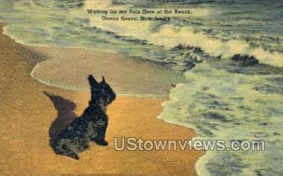 Black Dog On Beach - Ocean Grove, New Jersey NJ Postcard