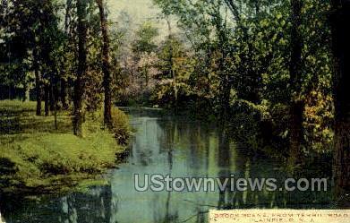 Brook Scene From Terrill Road  - Plainfield, New Jersey NJ Postcard