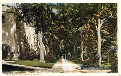 McCosh Walk - Princeton, New Jersey NJ Postcard