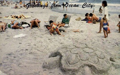 Greetings From Ocean City - New Jersey NJ Postcard