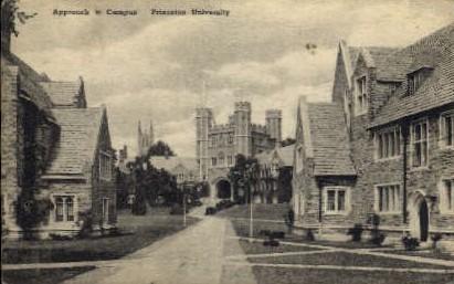 Approach to Campus, Princeton University - New Jersey NJ Postcard
