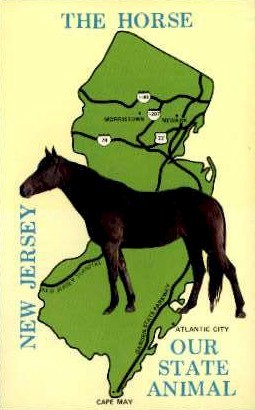 New Jersey Equine Advisory Board - Misc Postcard
