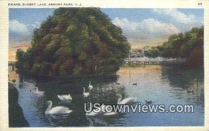 Swans, Sunset Lake - Asbury Park, New Jersey NJ Postcard